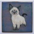 04-small-kitten.18145818